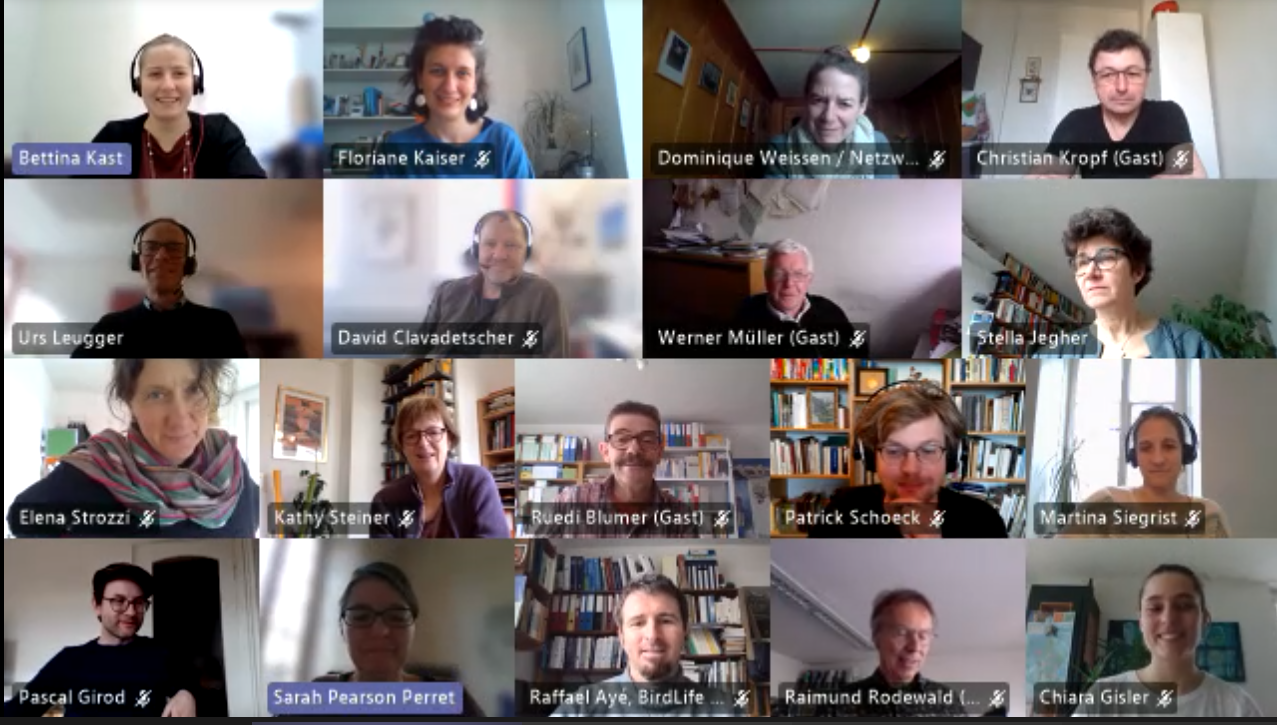 Screenshot der online Delegiertenversammlung